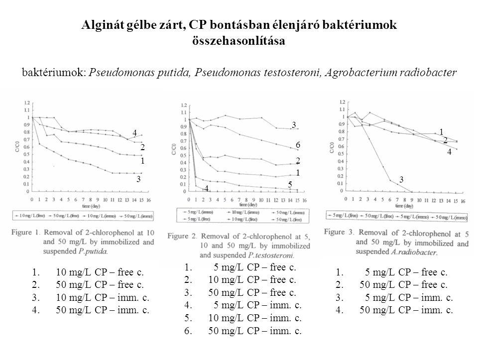 Alginát gélbe zárt, CP bontásban élenjáró baktériumok összehasonlítása baktériumok: Pseudomonas putida, Pseudomonas testosteroni, Agrobacterium radiobacter 1.10 mg/L CP – free c.