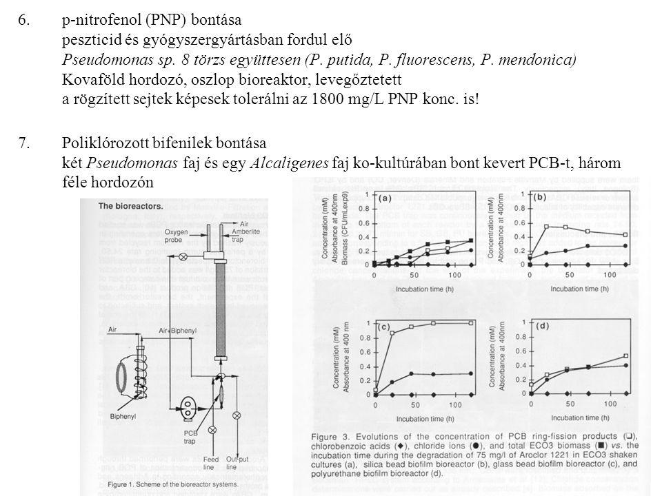 6.p-nitrofenol (PNP) bontása peszticid és gyógyszergyártásban fordul elő Pseudomonas sp. 8 törzs együttesen (P. putida, P. fluorescens, P. mendonica)