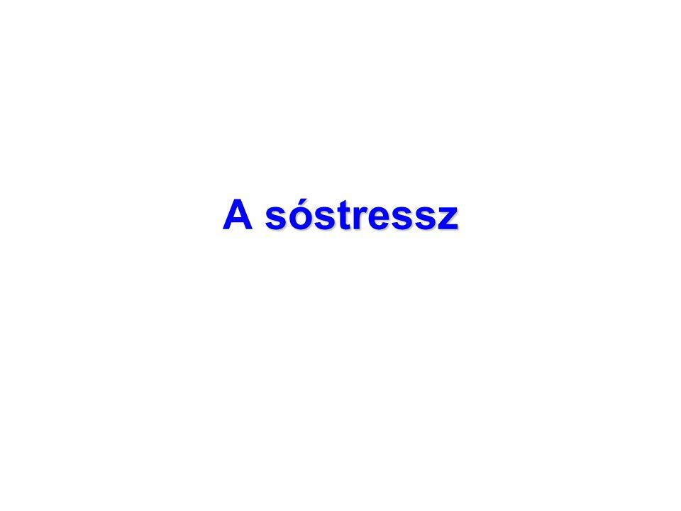 sóstressz A sóstressz