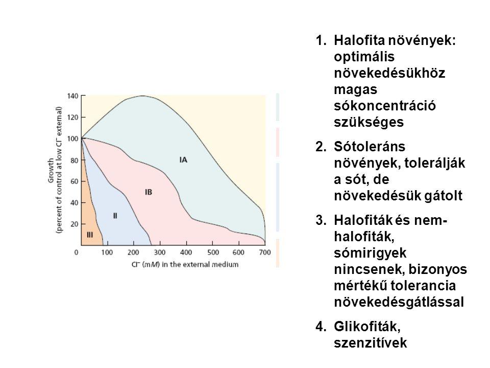 1.Halofita növények: optimális növekedésükhöz magas sókoncentráció szükséges 2.Sótoleráns növények, tolerálják a sót, de növekedésük gátolt 3.Halofitá