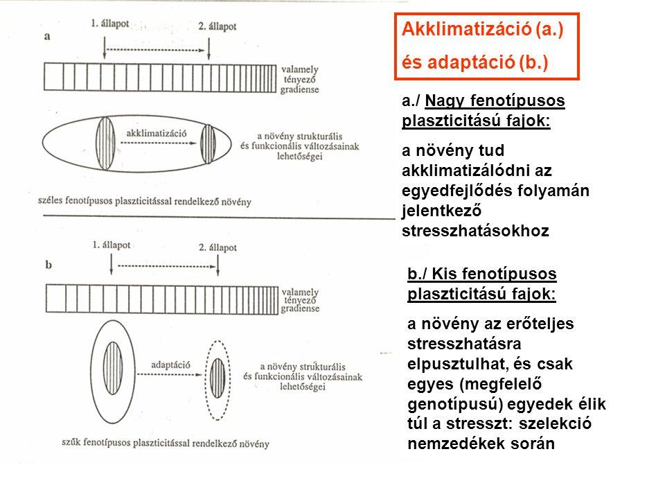 a./ Nagy fenotípusos plaszticitású fajok: a növény tud akklimatizálódni az egyedfejlődés folyamán jelentkező stresszhatásokhoz b./ Kis fenotípusos pla