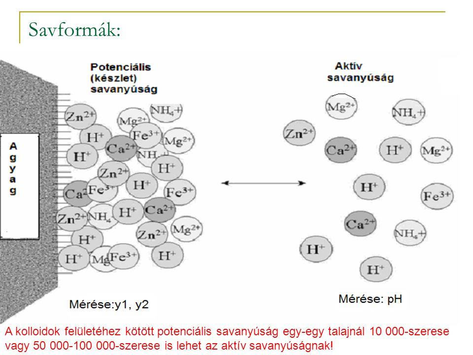 Savformák: A kolloidok felületéhez kötött potenciális savanyúság egy-egy talajnál 10 000-szerese vagy 50 000-100 000-szerese is lehet az aktív savanyú