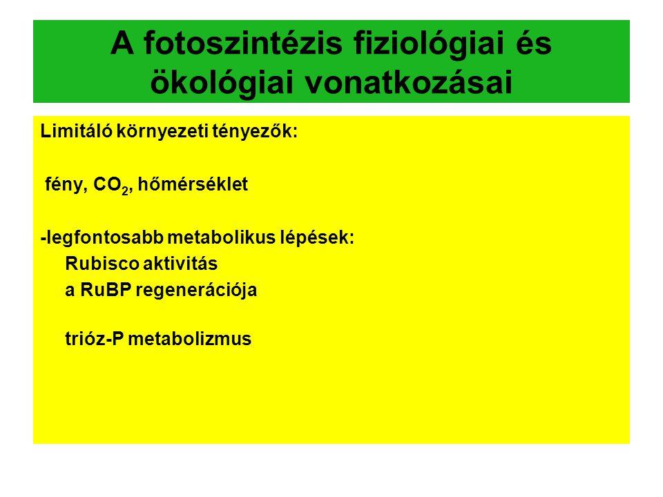 A fotoszintézis fiziológiai és ökológiai vonatkozásai Limitáló környezeti tényezők: fény, CO 2, hőmérséklet -legfontosabb metabolikus lépések: Rubisco aktivitás a RuBP regenerációja trióz-P metabolizmus