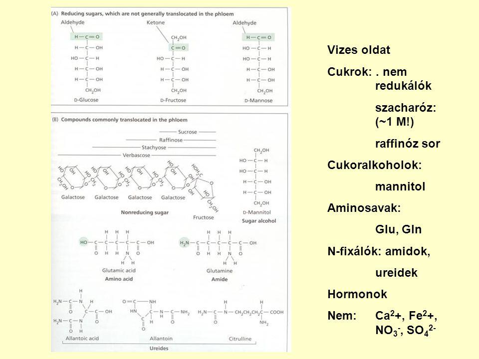 Vizes oldat Cukrok:. nem redukálók szacharóz: (~1 M!) raffinóz sor Cukoralkoholok: mannitol Aminosavak: Glu, Gln N-fixálók: amidok, ureidek Hormonok N