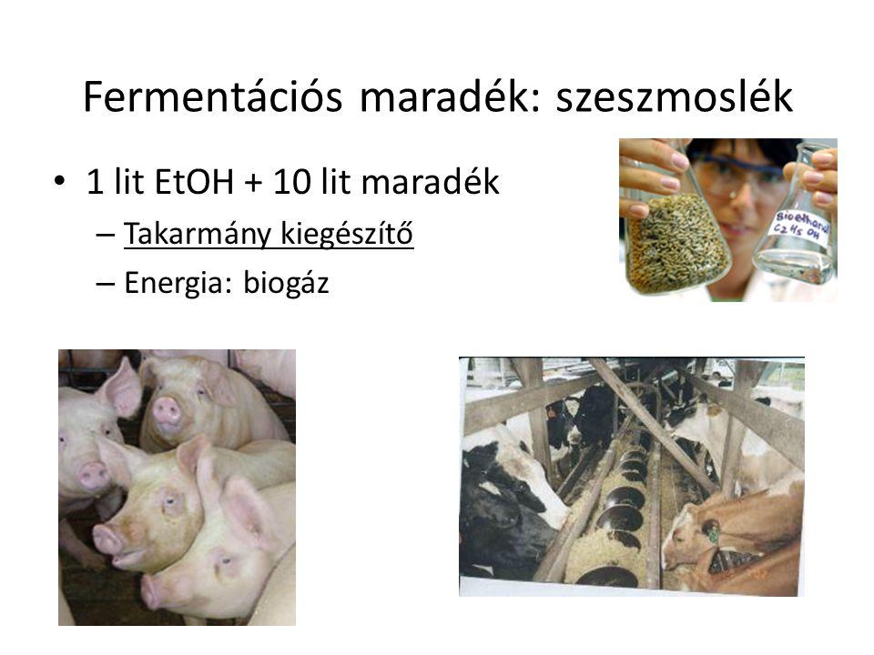 Fermentációs maradék: szeszmoslék 1 lit EtOH + 10 lit maradék – Takarmány kiegészítő – Energia: biogáz