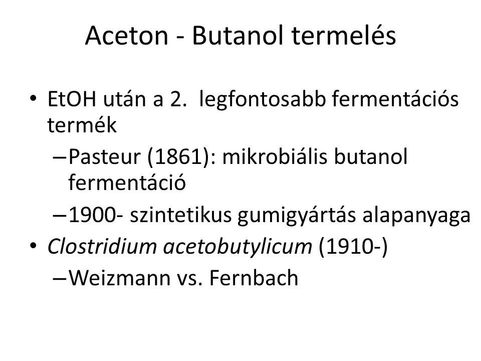 Aceton - Butanol termelés EtOH után a 2. legfontosabb fermentációs termék – Pasteur (1861): mikrobiális butanol fermentáció – 1900- szintetikus gumigy