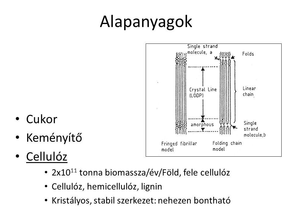 Alapanyagok Cukor Keményítő Cellulóz 2x10 11 tonna biomassza/év/Föld, fele cellulóz Cellulóz, hemicellulóz, lignin Kristályos, stabil szerkezet: nehez