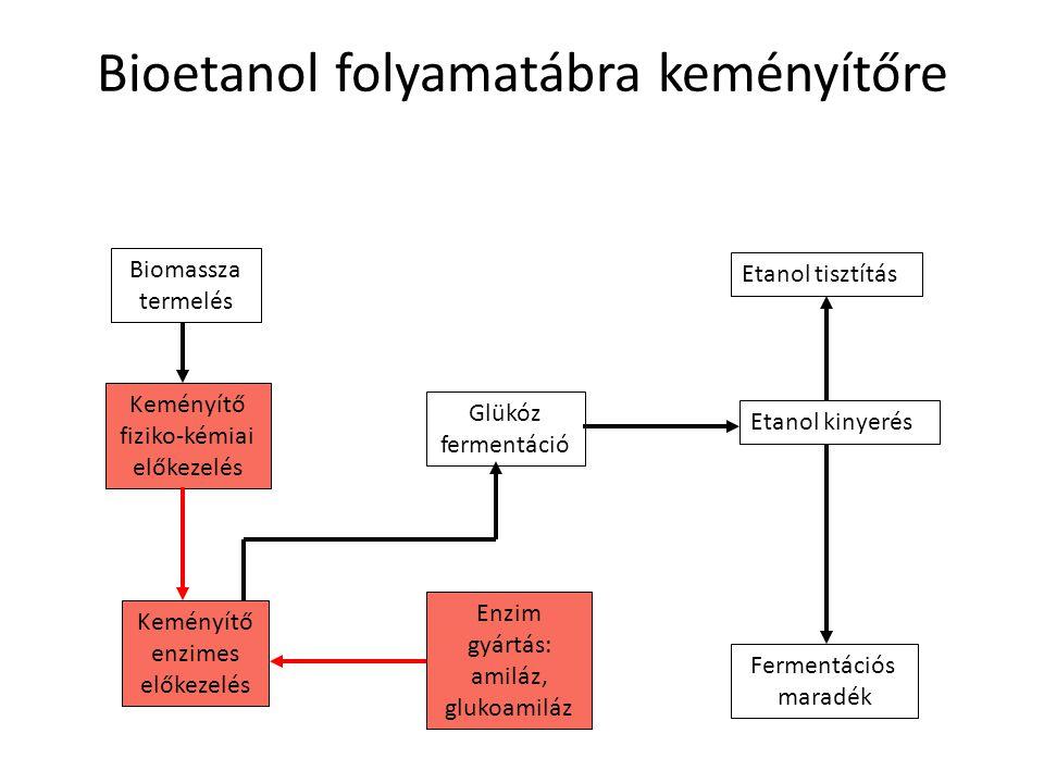 Bioetanol folyamatábra keményítőre Biomassza termelés Glükóz fermentáció Etanol kinyerés Etanol tisztítás Fermentációs maradék Enzim gyártás: amiláz,