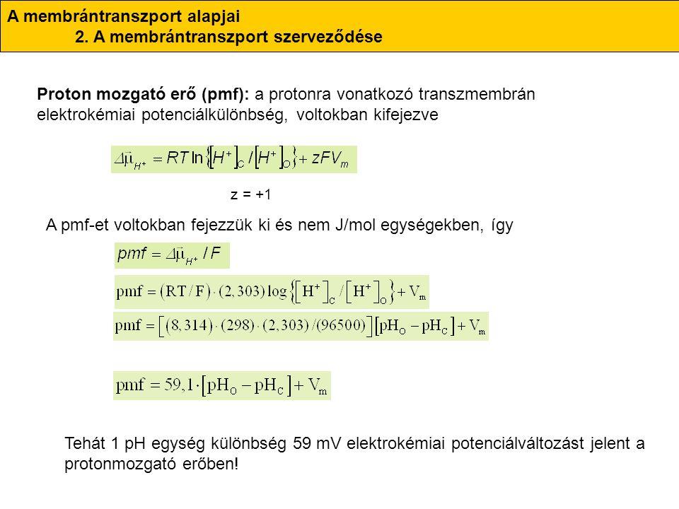 A membrántranszport alapjai 2. A membrántranszport szerveződése Proton mozgató erő (pmf): a protonra vonatkozó transzmembrán elektrokémiai potenciálkü