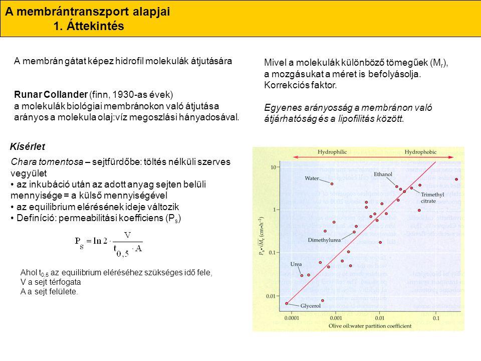 A membrántranszport alapjai 1. Áttekintés A membrán gátat képez hidrofil molekulák átjutására Runar Collander (finn, 1930-as évek) a molekulák biológi