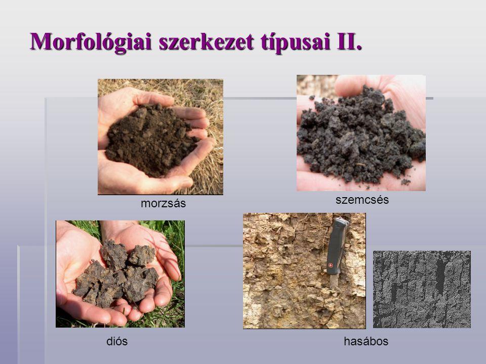 Morfológiai szerkezet típusai II. morzsás szemcsés dióshasábos