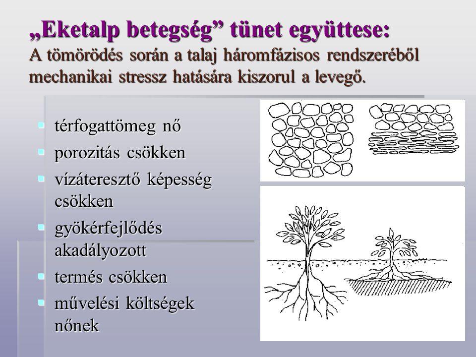 """""""Eketalp betegség"""" tünet együttese: A tömörödés során a talaj háromfázisos rendszeréből mechanikai stressz hatására kiszorul a levegő.  térfogattömeg"""