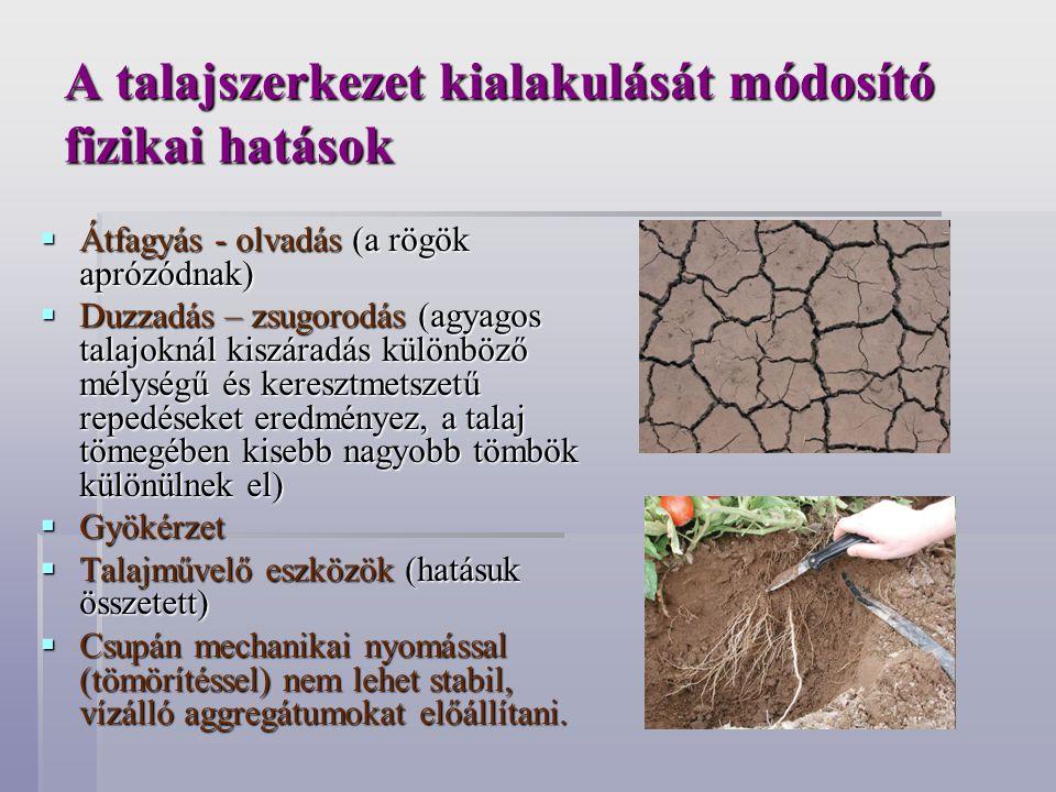 A talajszerkezet kialakulását módosító fizikai hatások  Átfagyás - olvadás (a rögök aprózódnak)  Duzzadás – zsugorodás (agyagos talajoknál kiszáradá