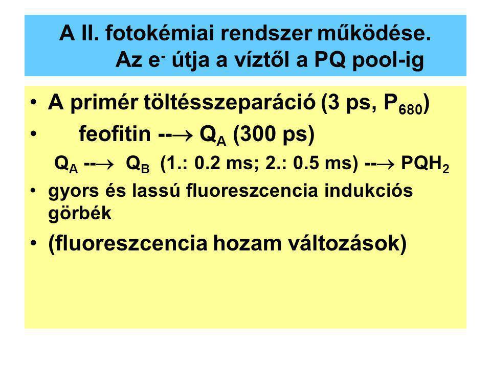 A II. fotokémiai rendszer működése. Az e - útja a víztől a PQ pool-ig A primér töltésszeparáció (3 ps, P 680 ) feofitin --  Q A (300 ps) Q A --  Q B