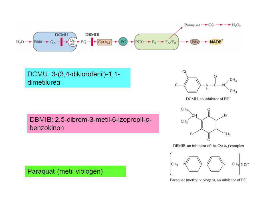 DCMU: 3-(3,4-diklorofenil)-1,1- dimetilurea DBMIB: 2,5-dibróm-3-metil-6-izopropil-p- benzokinon Paraquat (metil viologén)