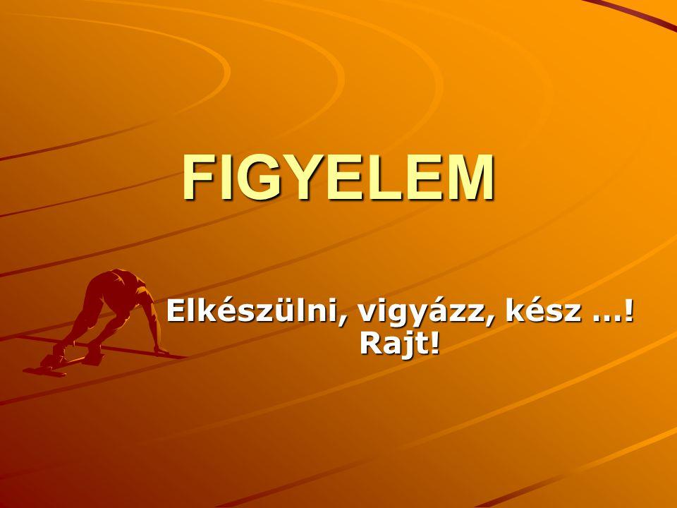Ajánlott irodalom Cziegler István (1994): Figyelem.