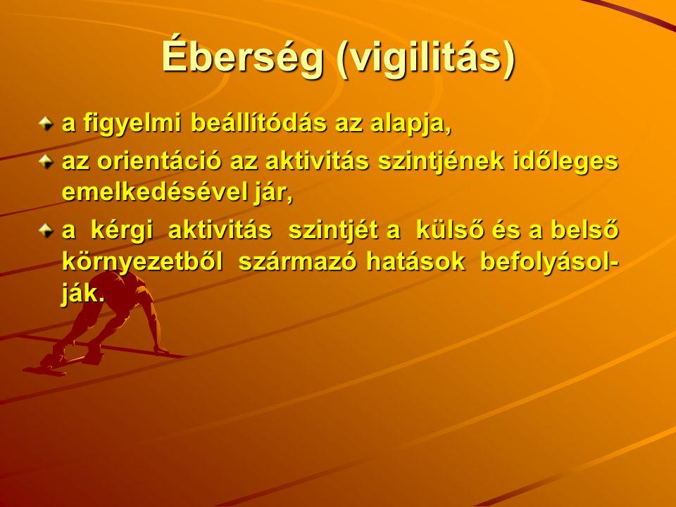 Éberség (vigilitás) a figyelmi beállítódás az alapja, az orientáció az aktivitás szintjének időleges emelkedésével jár, a kérgi aktivitás szintjét a k