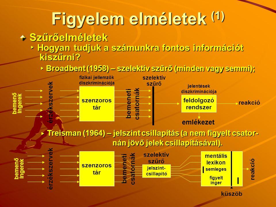Figyelem elméletek (1) Szűrőelméletek ▸ Hogyan tudjuk a számunkra fontos információt ▸ Hogyan tudjuk a számunkra fontos információt kiszűrni? kiszűrni