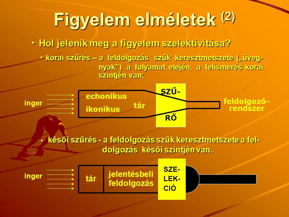 SZŰ- RŐ Figyelem elméletek (2) inger feldolgozó- rendszer echonikus ikonikus tár ▸ Hol jelenik meg a figyelem szelektivitása? ▸ Hol jelenik meg a figy