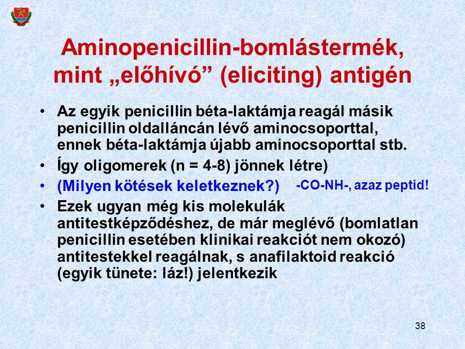 """38 Aminopenicillin-bomlástermék, mint """"előhívó (eliciting) antigén Az egyik penicillin béta-laktámja reagál másik penicillin oldalláncán lévő aminocsoporttal, ennek béta-laktámja újabb aminocsoporttal stb."""