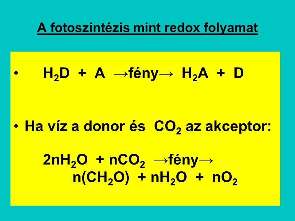 A fotoszintézis mint redox folyamat H 2 D + A →fény→ H 2 A + D Ha víz a donor és CO 2 az akceptor: 2nH 2 O + nCO 2 →fény→ n(CH 2 O) + nH 2 O + nO 2