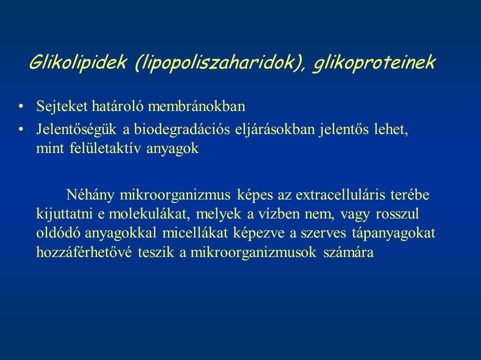 Glikolipidek (lipopoliszaharidok), glikoproteinek Sejteket határoló membránokban Jelentőségük a biodegradációs eljárásokban jelentős lehet, mint felül