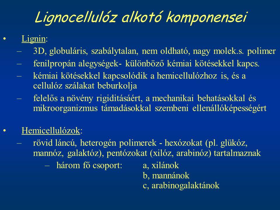 Lignocellulóz alkotó komponensei Lignin: –3D, globuláris, szabálytalan, nem oldható, nagy molek.s. polimer –fenilpropán alegységek- különböző kémiai k