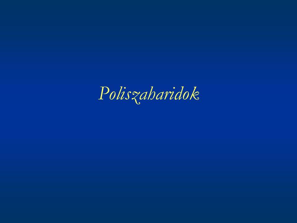 Általános jellemzésük Poliszaharidok vagy glükánok sok monoszaharid egységből felépülő óriás molekulák Vízben nem oldódnak, vagy ha igen oldatuk kolloid tulajdonságokat mutat A legelterjedtebb természetes eredetű szénvegyületek Állatok, növények, mikroorganizmusok sejtjeiben különféle szerkezetű poliszaharidok, funkciójuk szerint váz-, tartaléktápanyag szénhidrátok