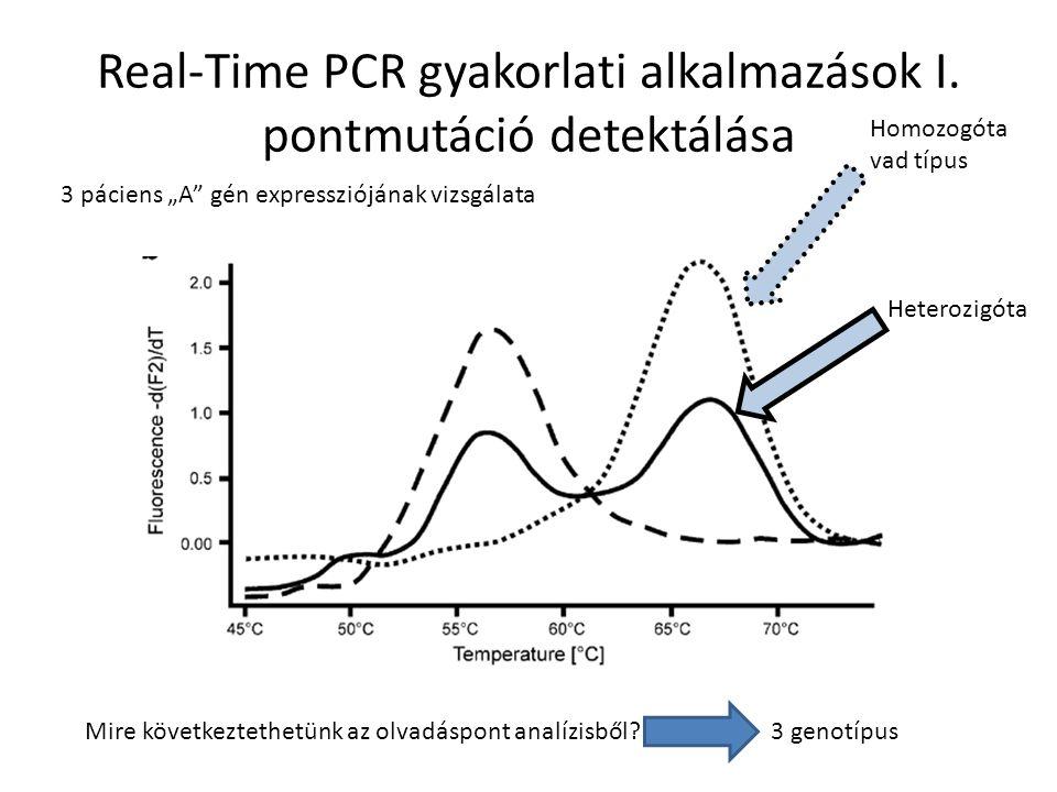 DNS chipek használata génexpresszió változása az időben v ABCDABCD 0h 2h 4h 6h 8h 10h Mit állapíthatunk meg?