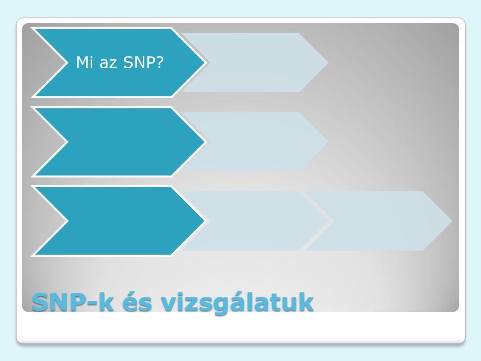 SNP-k és vizsgálatuk Mi az SNP