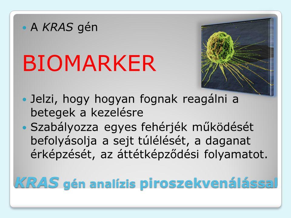 KRAS gén analízis piroszekvenálással A KRAS gén BIOMARKER Jelzi, hogy hogyan fognak reagálni a betegek a kezelésre Szabályozza egyes fehérjék működését befolyásolja a sejt túlélését, a daganat érképzését, az áttétképződési folyamatot.