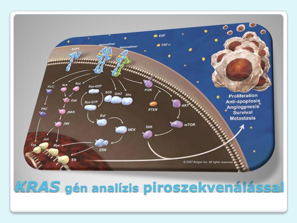 KRAS gén analízis piroszekvenálással