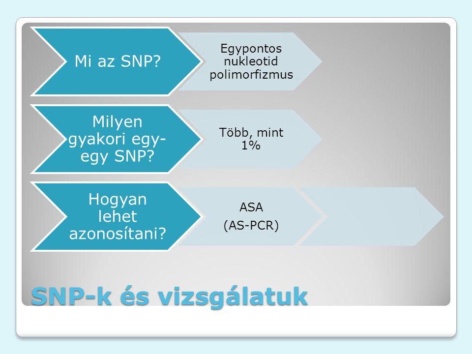 SNP-k és vizsgálatuk Mi az SNP? Egypontos nukleotid polimorfizmus Milyen gyakori egy- egy SNP? Több, mint 1% Hogyan lehet azonosítani? ASA (AS-PCR)