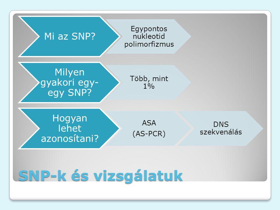 SNP-k és vizsgálatuk Mi az SNP? Egypontos nukleotid polimorfizmus Milyen gyakori egy- egy SNP? Több, mint 1% Hogyan lehet azonosítani? ASA (AS-PCR) DN