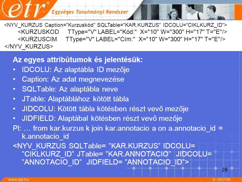 28 Az egyes attribútumok és jelentésük: IDCOLU: Az alaptábla ID mezője Caption: Az adat megnevezése SQLTable: Az alaptábla neve JTable: Alaptáblához k