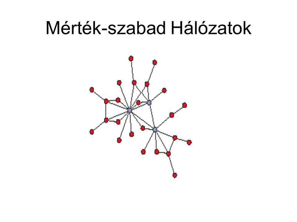 Mérték-szabad Hálózatok