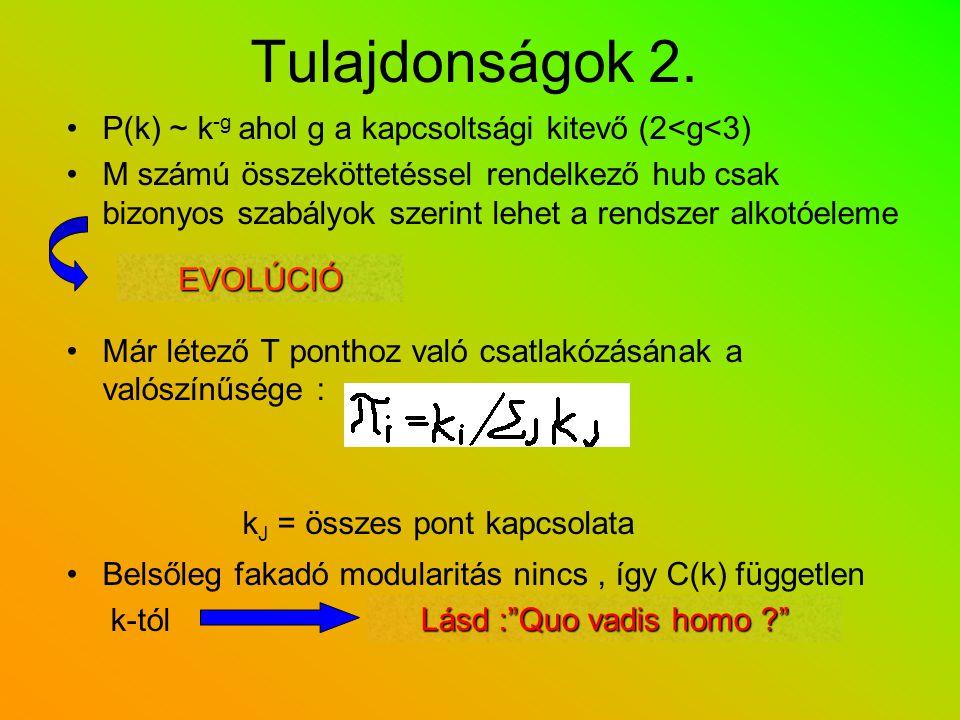 Tulajdonságok 2. P(k) ~ k -g ahol g a kapcsoltsági kitevő (2<g<3) M számú összeköttetéssel rendelkező hub csak bizonyos szabályok szerint lehet a rend