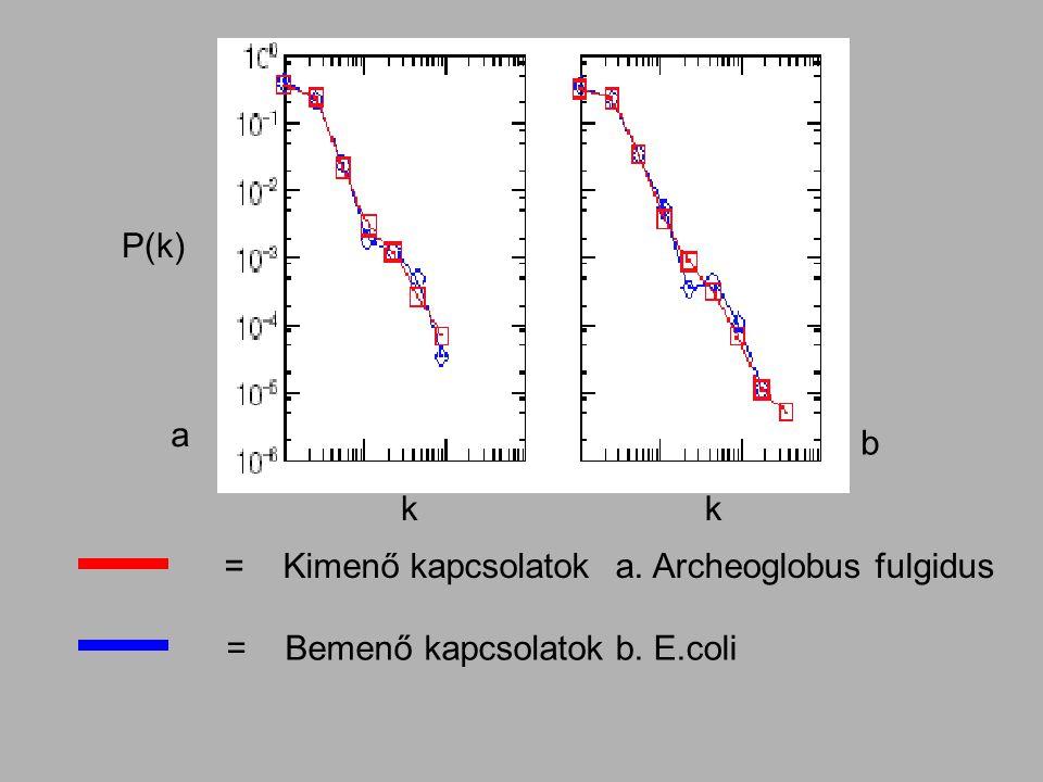 P(k) kk = Kimenő kapcsolatok = Bemenő kapcsolatok a b a. Archeoglobus fulgidus b. E.coli