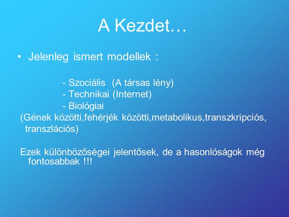 A Kezdet… Jelenleg ismert modellek : - Szociális (A társas lény) - Technikai (Internet) - Biológiai (Gének közötti,fehérjék közötti,metabolikus,transzkripciós, transzlációs) Ezek különbözőségei jelentősek, de a hasonlóságok még fontosabbak !!!