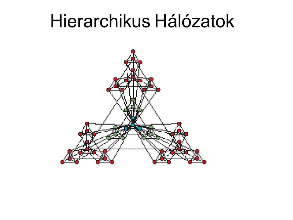 Hierarchikus Hálózatok