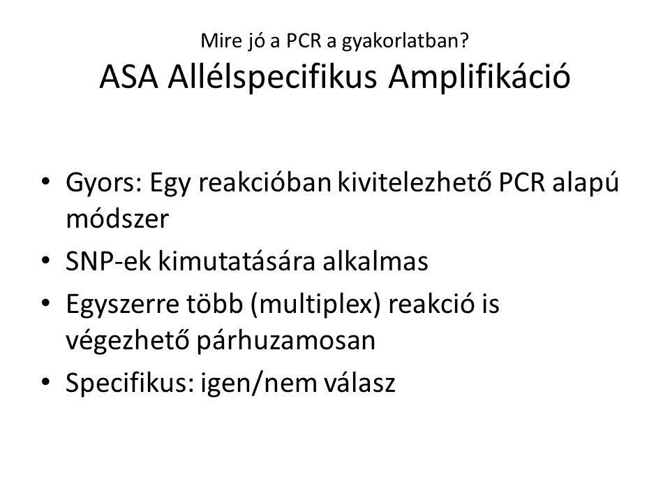 Mire jó a PCR a gyakorlatban? ASA Allélspecifikus Amplifikáció Gyors: Egy reakcióban kivitelezhető PCR alapú módszer SNP-ek kimutatására alkalmas Egys