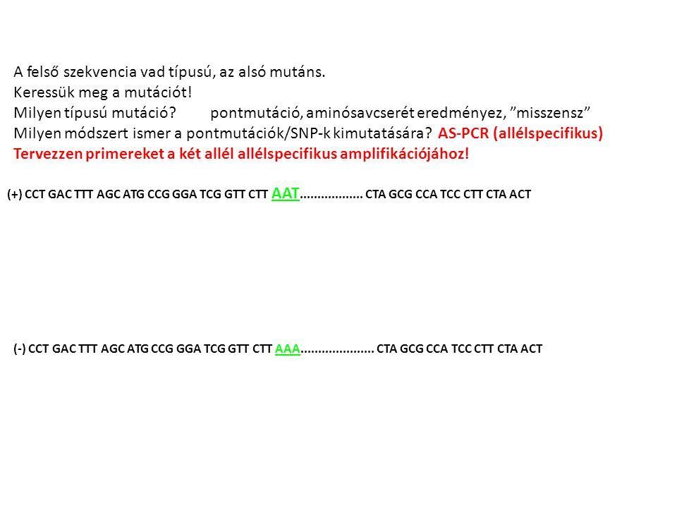 (+) CCT GAC TTT AGC ATG CCG GGA TCG GTT CTT AAT..................