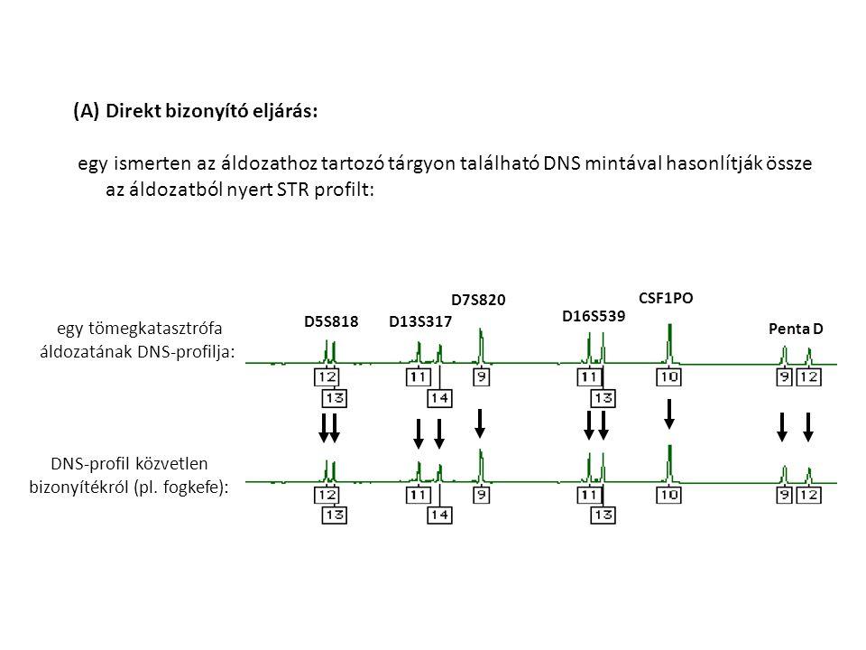 egy tömegkatasztrófa áldozatának DNS-profilja: DNS-profil közvetlen bizonyítékról (pl. fogkefe): D5S818D13S317 D7S820 D16S539 CSF1PO Penta D (A)Direkt