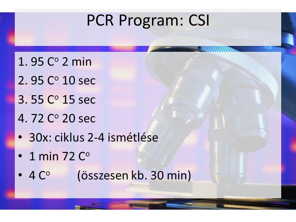 PCR Program: CSI 1. 95 C o 2 min 2. 95 C o 10 sec 3. 55 C o 15 sec 4. 72 C o 20 sec 30x: ciklus 2-4 ismétlése 1 min 72 C o 4 C o (összesen kb. 30 min)
