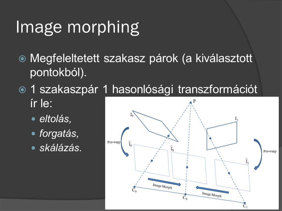  Megfeleltetett szakasz párok (a kiválasztott pontokból).  1 szakaszpár 1 hasonlósági transzformációt ír le: eltolás, forgatás, skálázás.