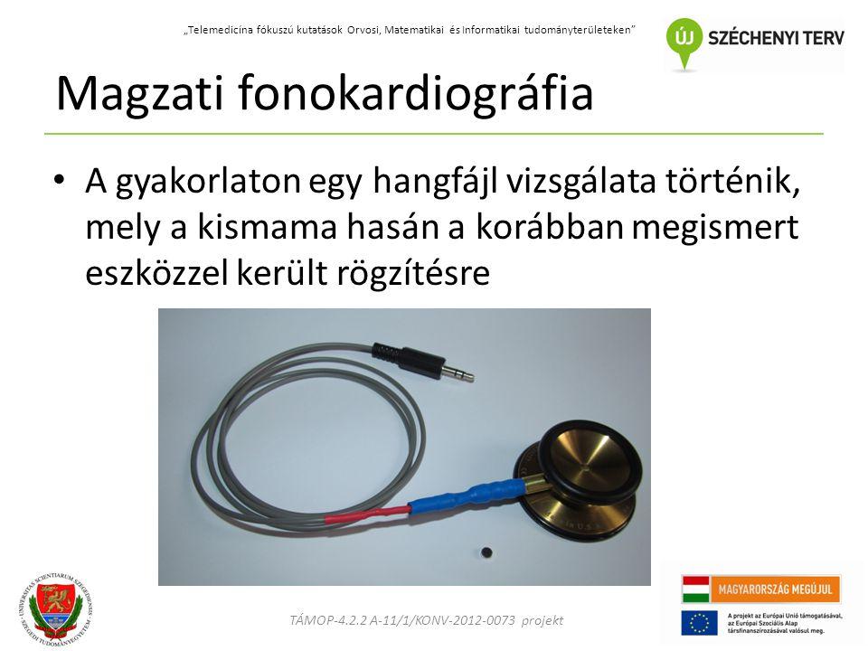 """TÁMOP-4.2.2 A-11/1/KONV-2012-0073 projekt """"Telemedicína fókuszú kutatások Orvosi, Matematikai és Informatikai tudományterületeken Magzati fonokardiográfia A gyakorlaton egy hangfájl vizsgálata történik, mely a kismama hasán a korábban megismert eszközzel került rögzítésre"""