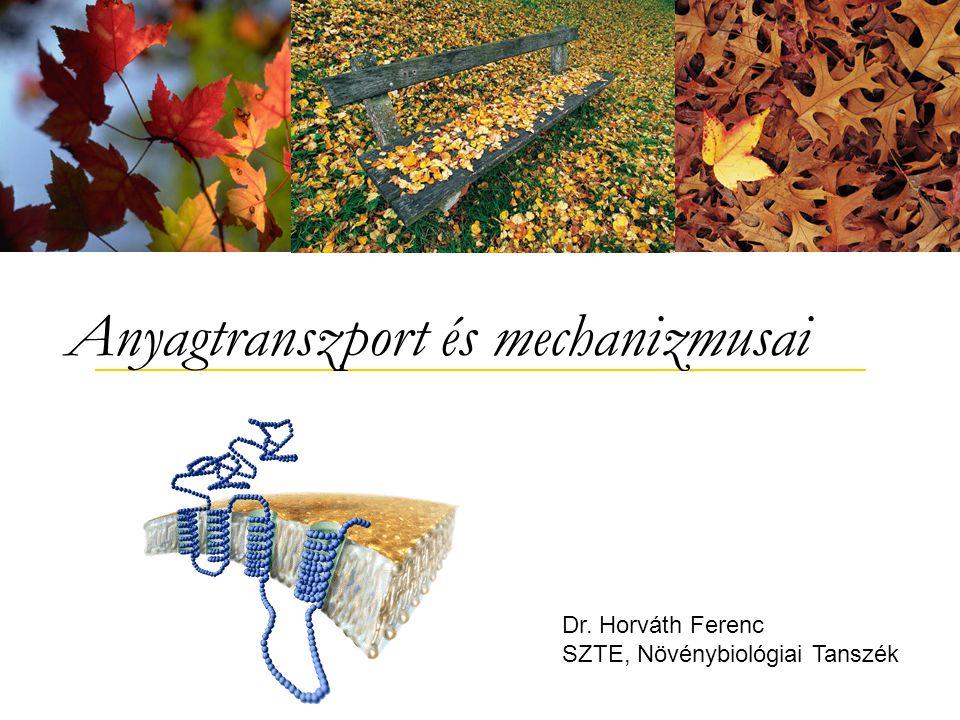 Dr. Horváth Ferenc SZTE, Növénybiológiai Tanszék Anyagtranszport és mechanizmusai