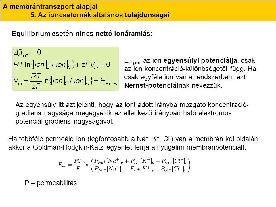 A membrántranszport alapjai 5. Az ioncsatornák általános tulajdonságai Equilibrium esetén nincs nettó ionáramlás: E eq,ion az ion egyensúlyi potenciál