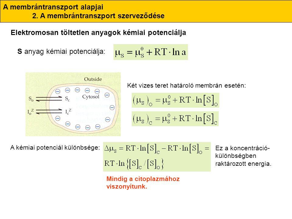S anyag kémiai potenciálja: A membrántranszport alapjai 2. A membrántranszport szerveződése Elektromosan töltetlen anyagok kémiai potenciálja A kémiai