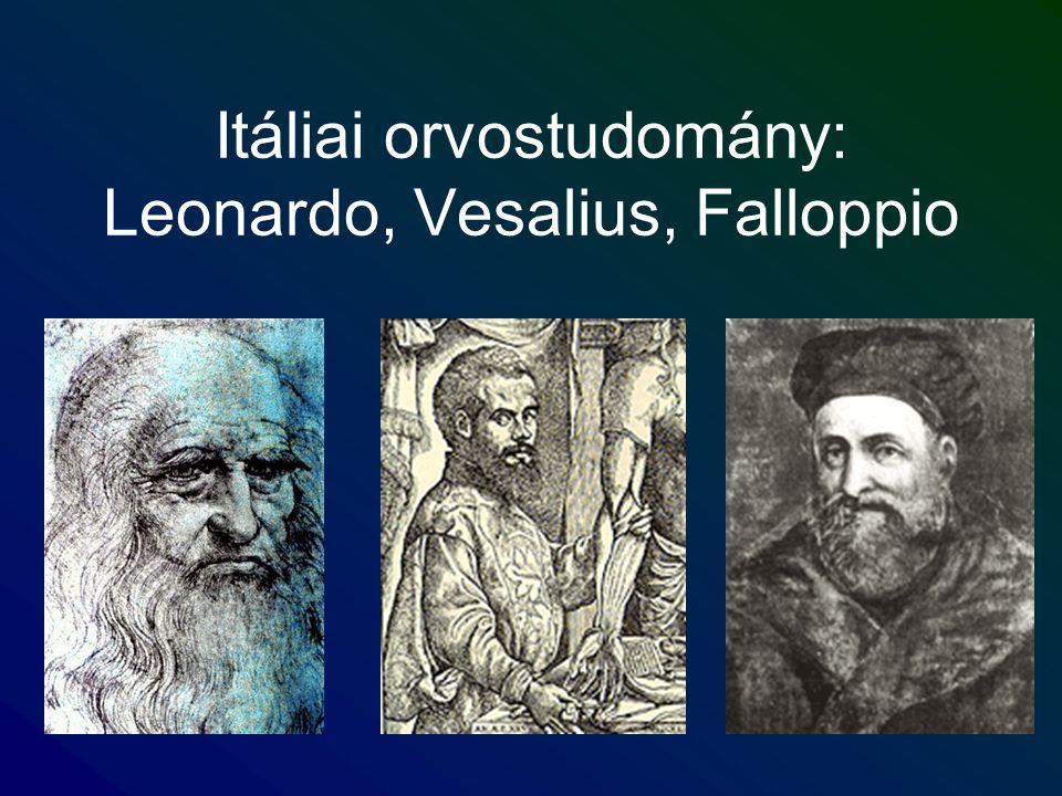 Itáliai orvostudomány: Leonardo, Vesalius, Falloppio